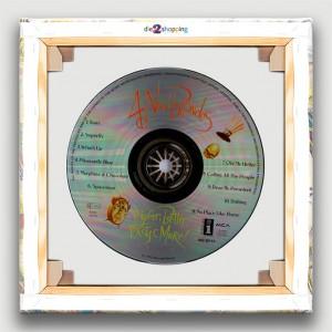 #-CD-4-non-blondes-bic-BB